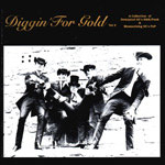 VARIOUS ARTISTS - DIGGIN' FOR GOLD VOL.2